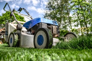 an image of a lawnmower